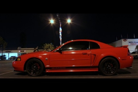 Another trmustang 2004 Ford Mustang post... - 14002003