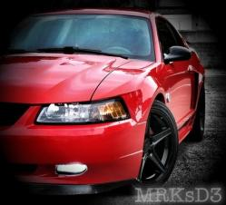 trmustangs 2004 Ford Mustang