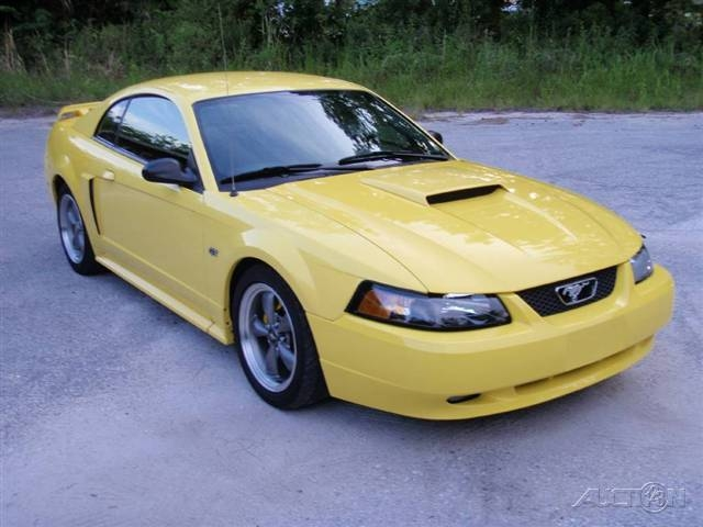 Candi-03SamsonGT 2003 Ford Mustang 14021843