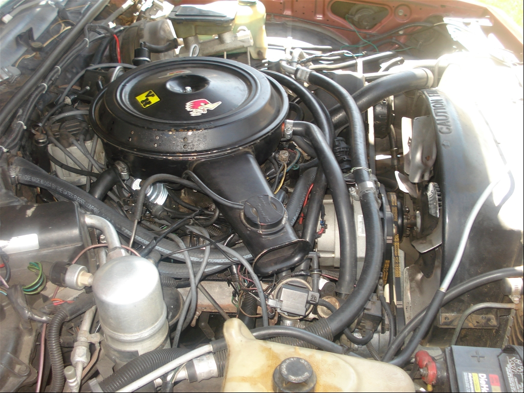 305 chevy crate engines for sale 305 free engine image for user manual download. Black Bedroom Furniture Sets. Home Design Ideas