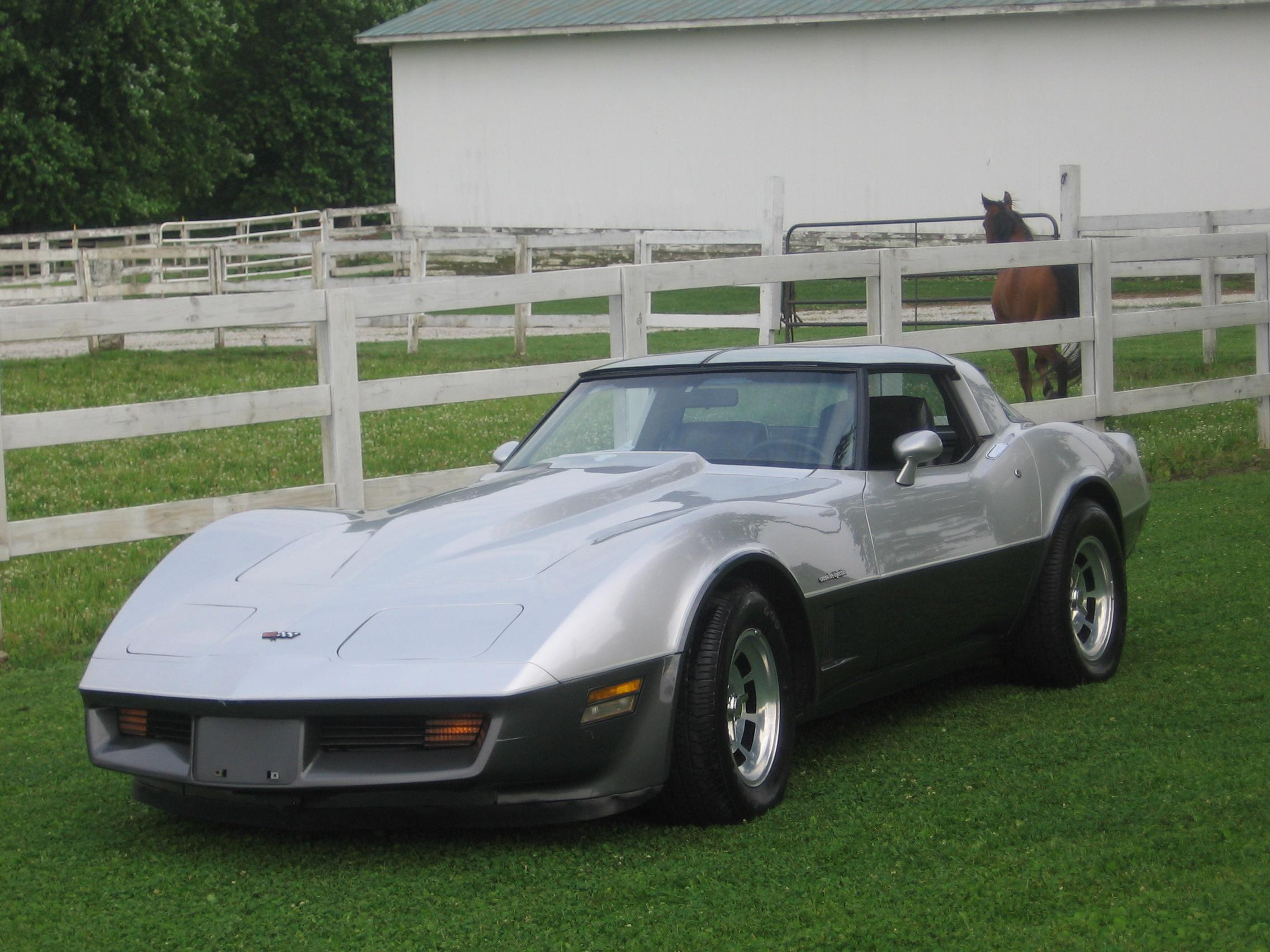 Another Nightmanis 1982 Chevrolet Corvette post... - 14053295