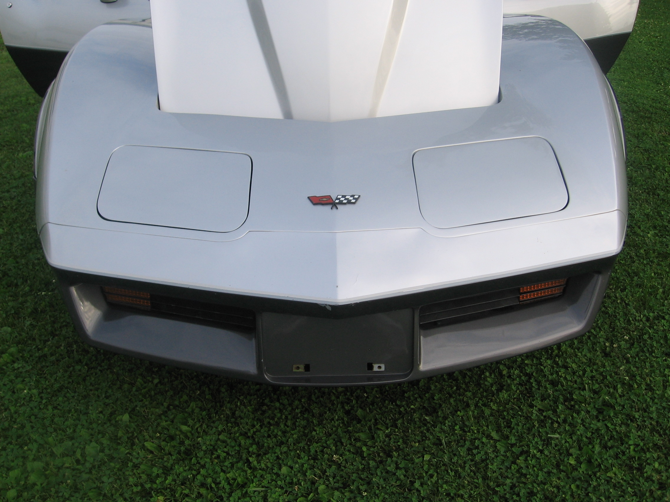 Another Nightmanis 1982 Chevrolet Corvette post... - 14053317