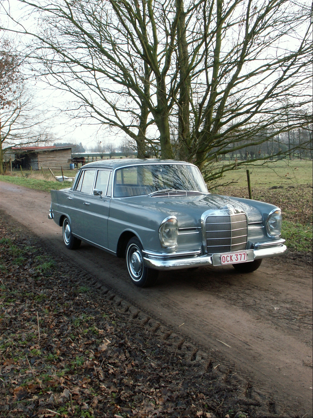 1950cosmo 39 s 1967 mercedes benz s class in ghent. Black Bedroom Furniture Sets. Home Design Ideas