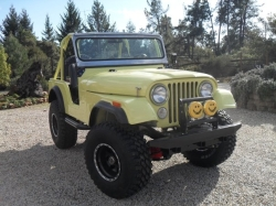 Shelarita 1974 AMC Jeep DJ5