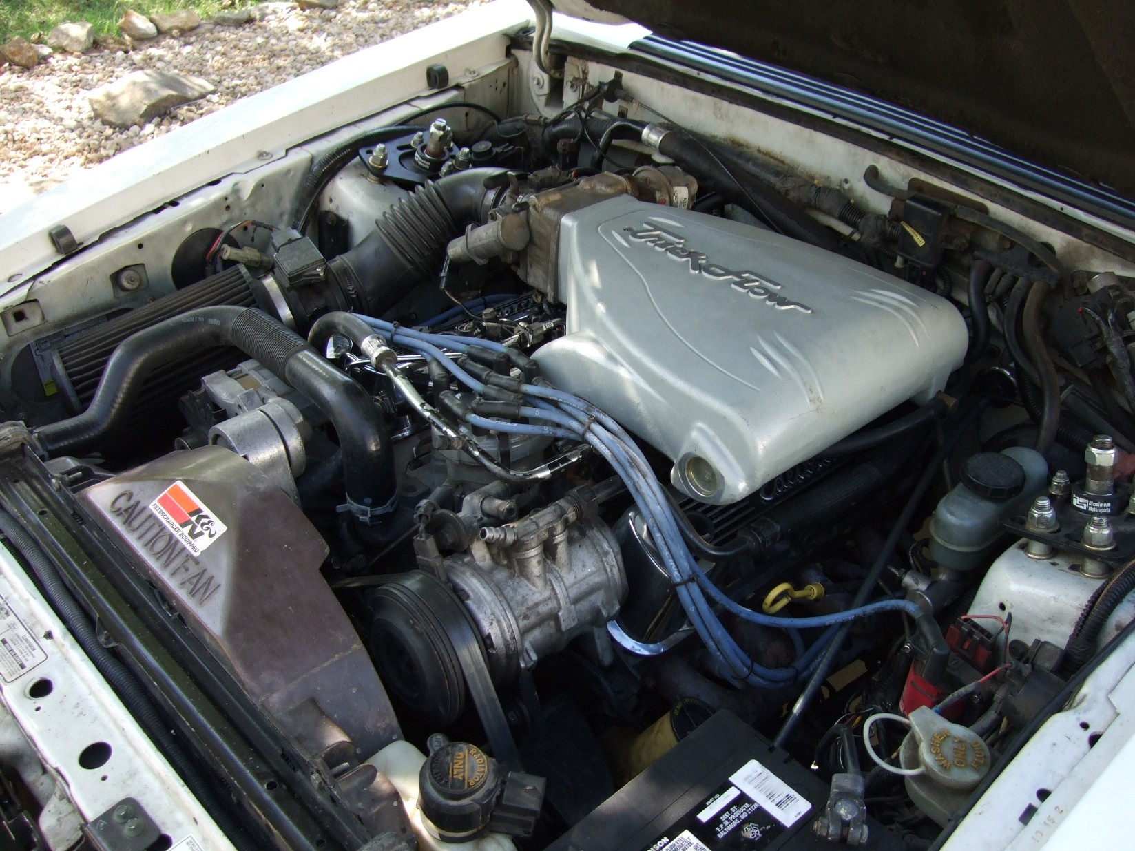 Another shcctx 1991 Ford Mustang post... - 14089383