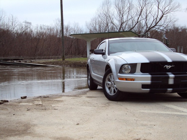 stanggirl08 2007 Ford Mustang