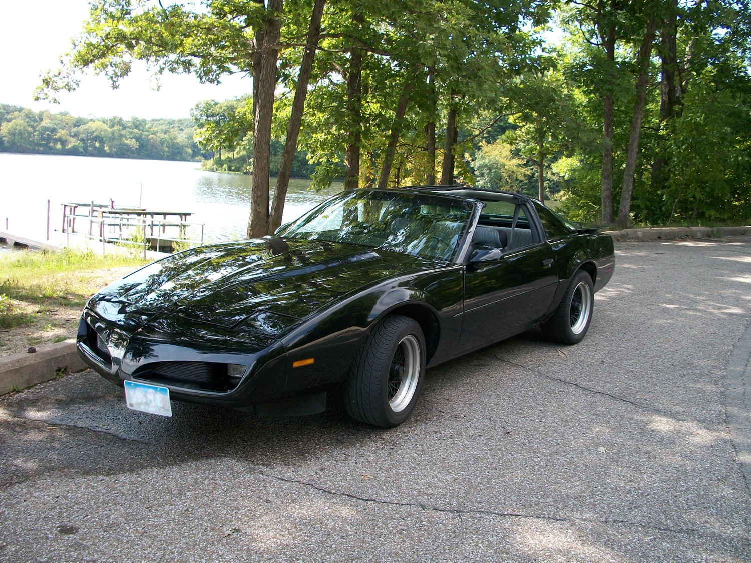 Mamamia9110 1991 Pontiac Firebird Specs Photos Modification Info