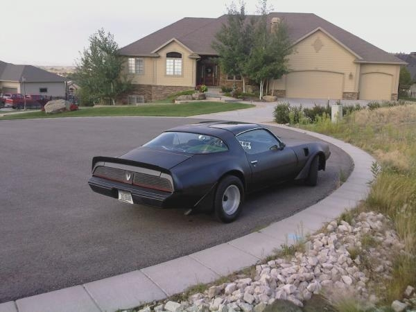 Another DreamCharger1969 1981 Pontiac Trans Am post... - 14113900