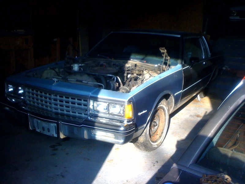 Another sadie381 1985 Chevrolet Caprice post... - 14127806
