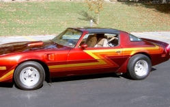 TransAmStans 1979 Pontiac Trans Am
