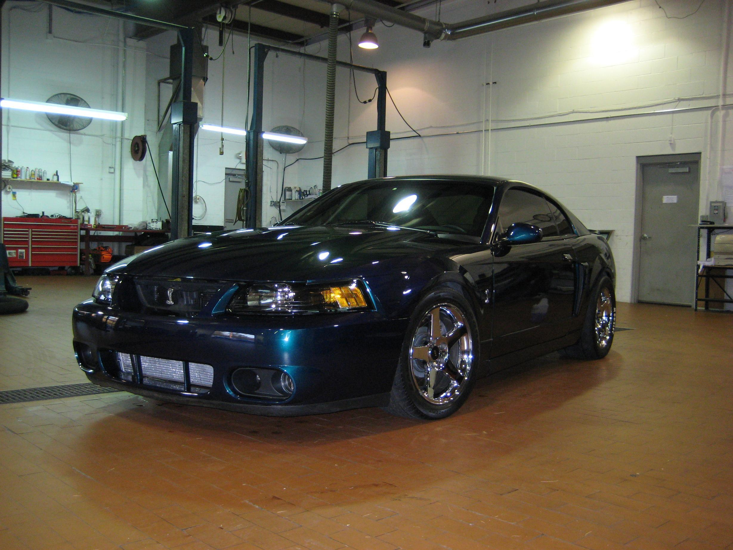 mystic04snake 2004 Ford Mustang