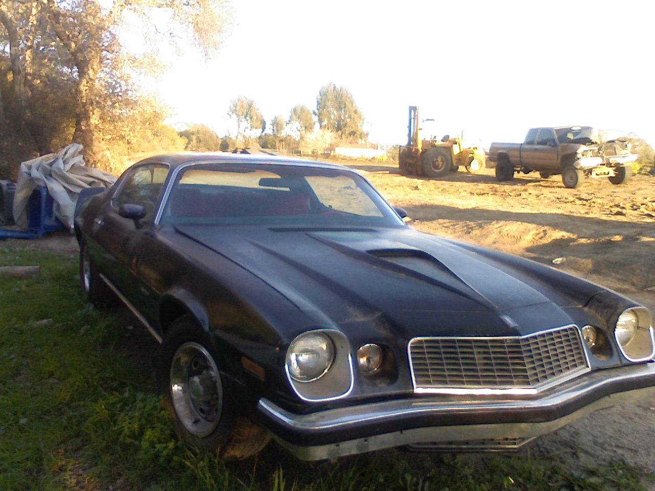 Another Cyteone 1976 Chevrolet Camaro post... - 14150803