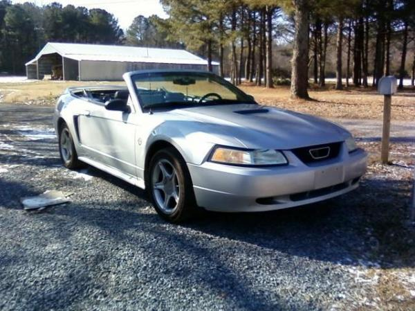 Another PinkPonyGirls 1999 Ford Mustang post... - 14165378