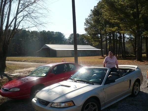 Another PinkPonyGirls 1999 Ford Mustang post... - 14165389