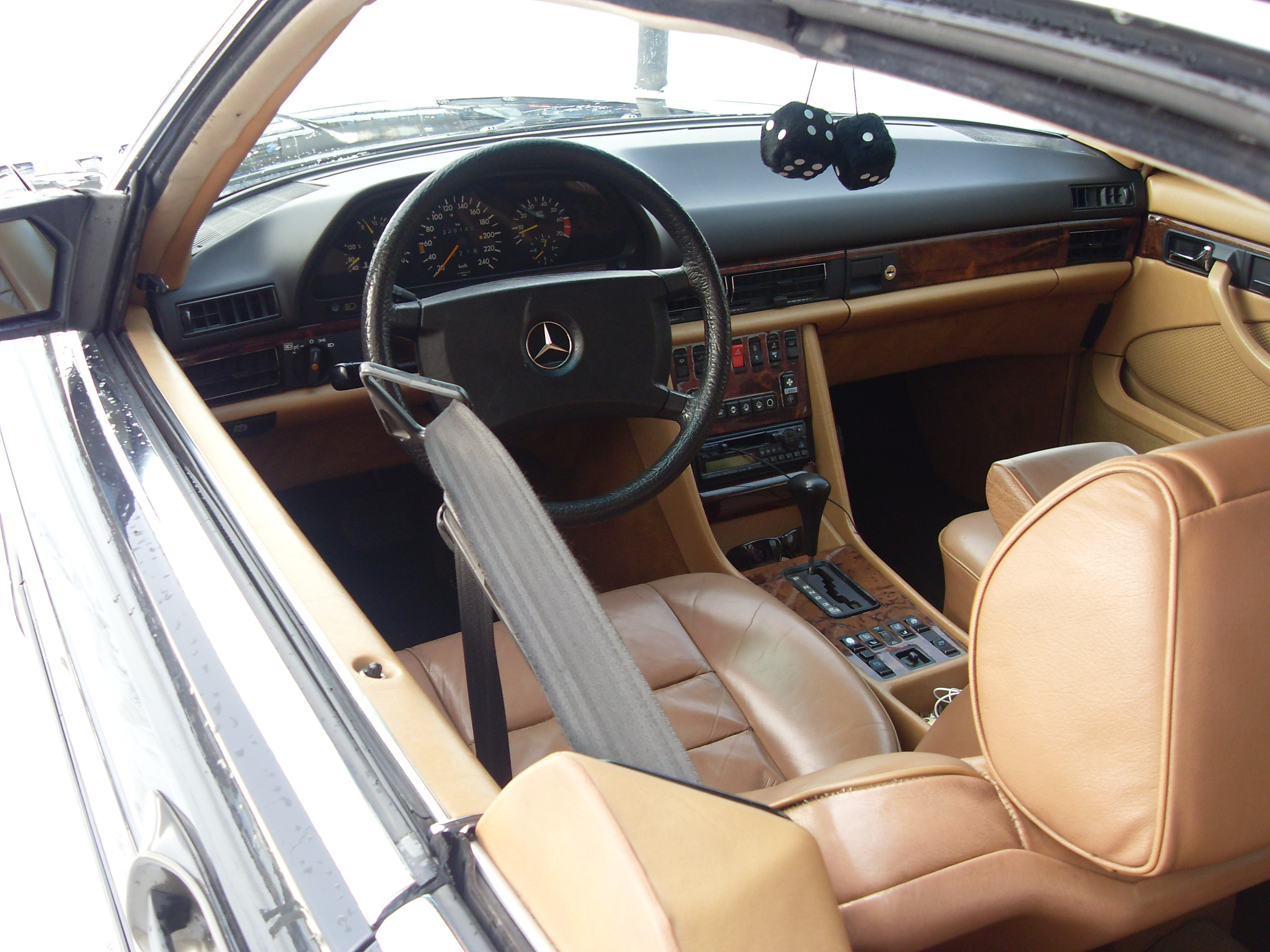 Another Bizhu 1983 Mercedes-Benz S-Class post... - 14179331