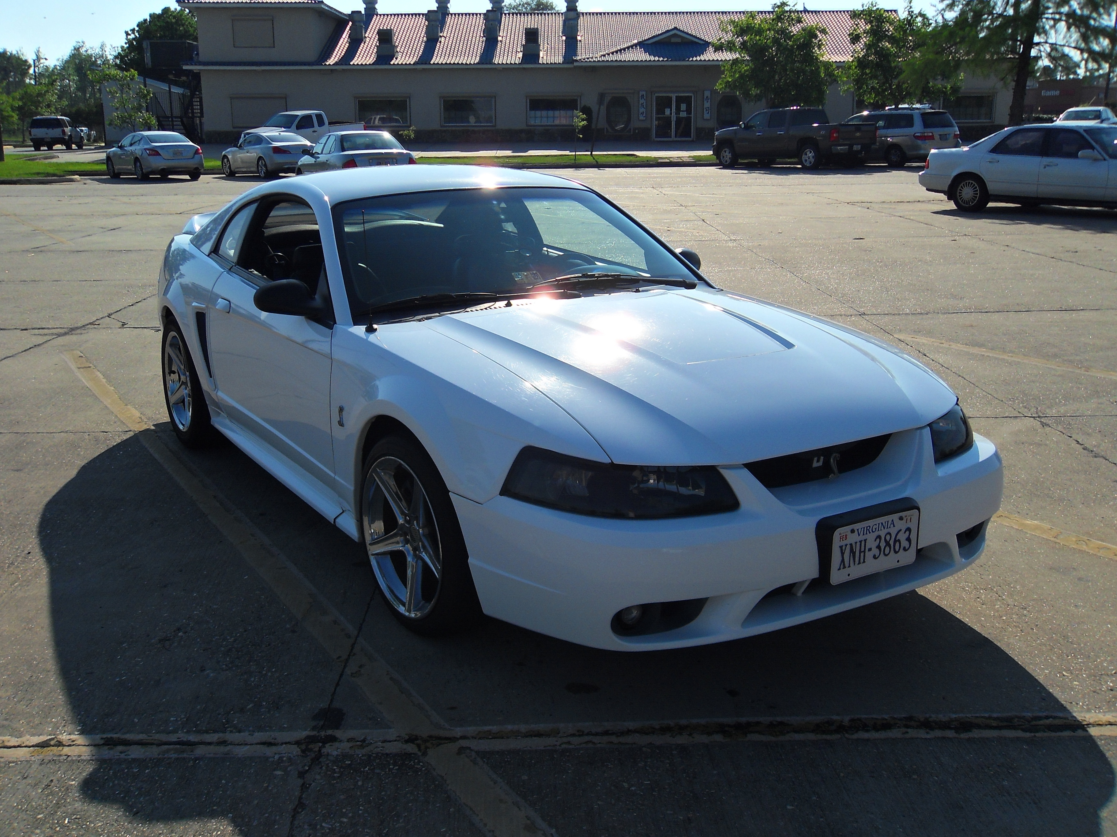 erickelley02 1999 Ford Mustang