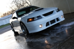 whtlitn46gts 2004 Ford Mustang