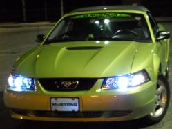 Mangogirl205s 2001 Ford Mustang