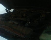 Another rabit2be 1991 Jeep Grand Wagoneer post... - 14215549