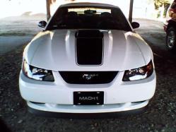 TimsMach1s 2004 Ford Mustang