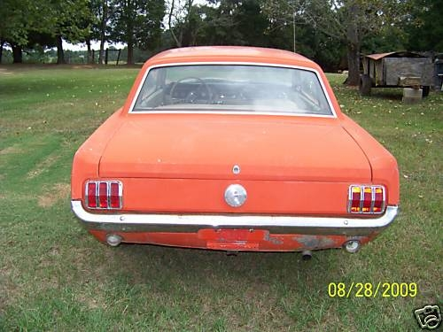 TimsMach1 1966 Ford Mustang 14217801