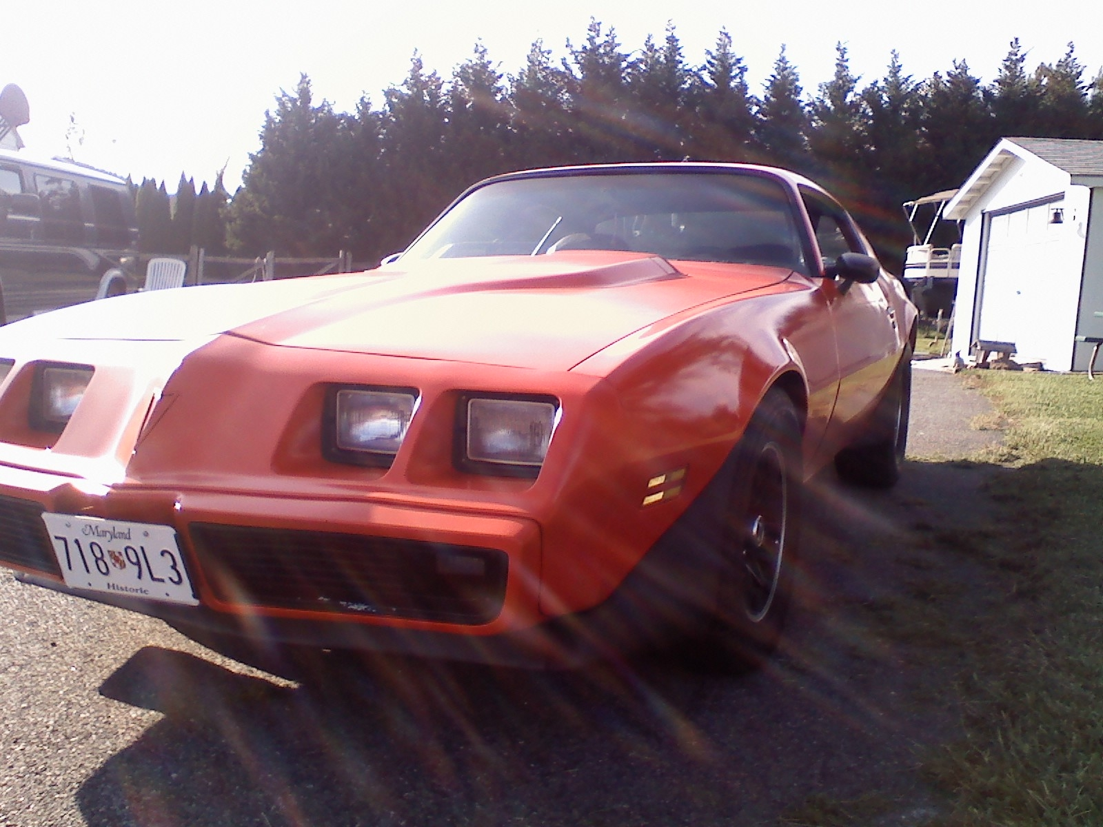 Haha_OhReally 1979 Pontiac Trans Am 14232684