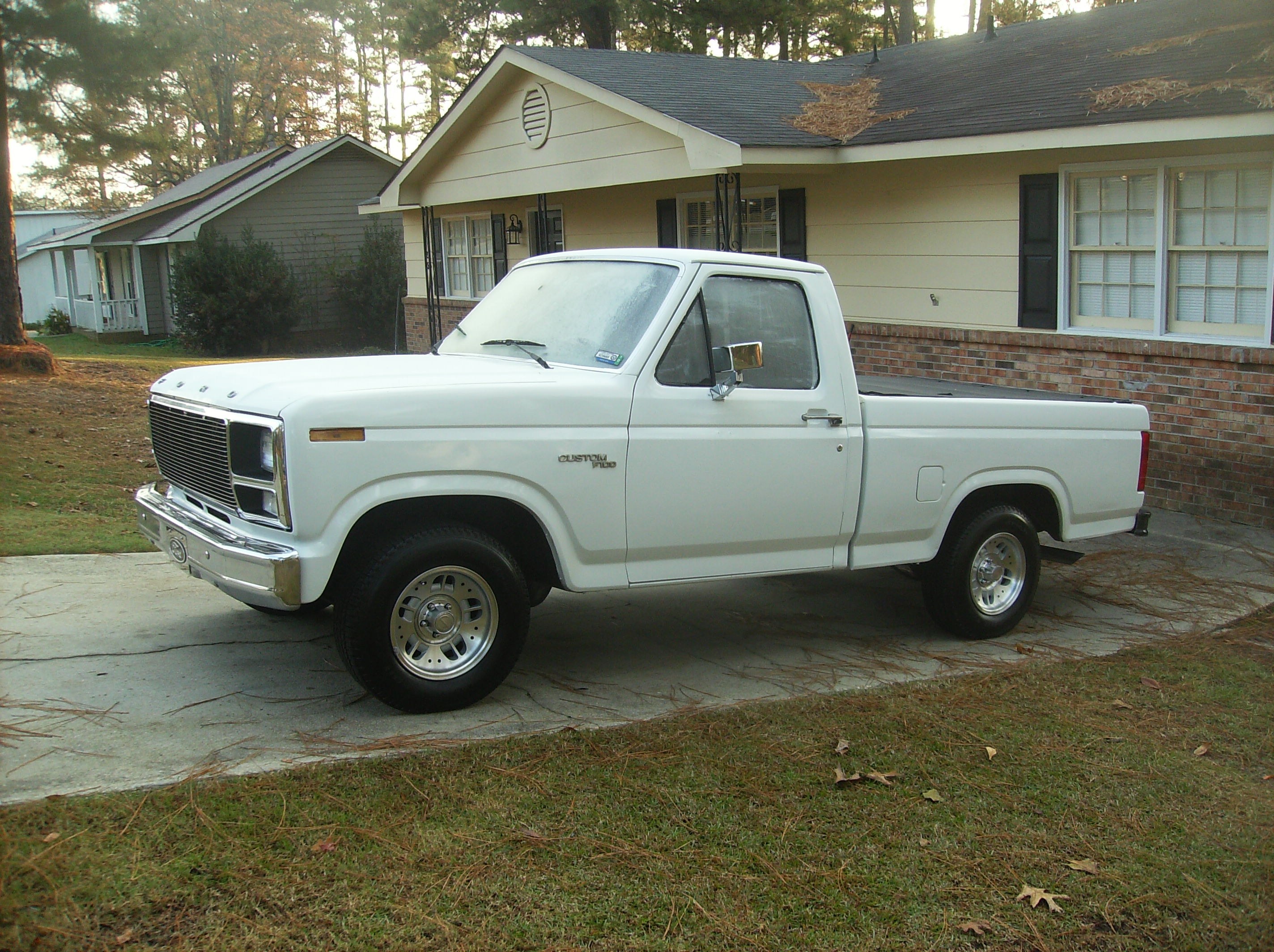 dalajo 1981 ford f150 regular cab specs photos modification info at cardomain. Black Bedroom Furniture Sets. Home Design Ideas