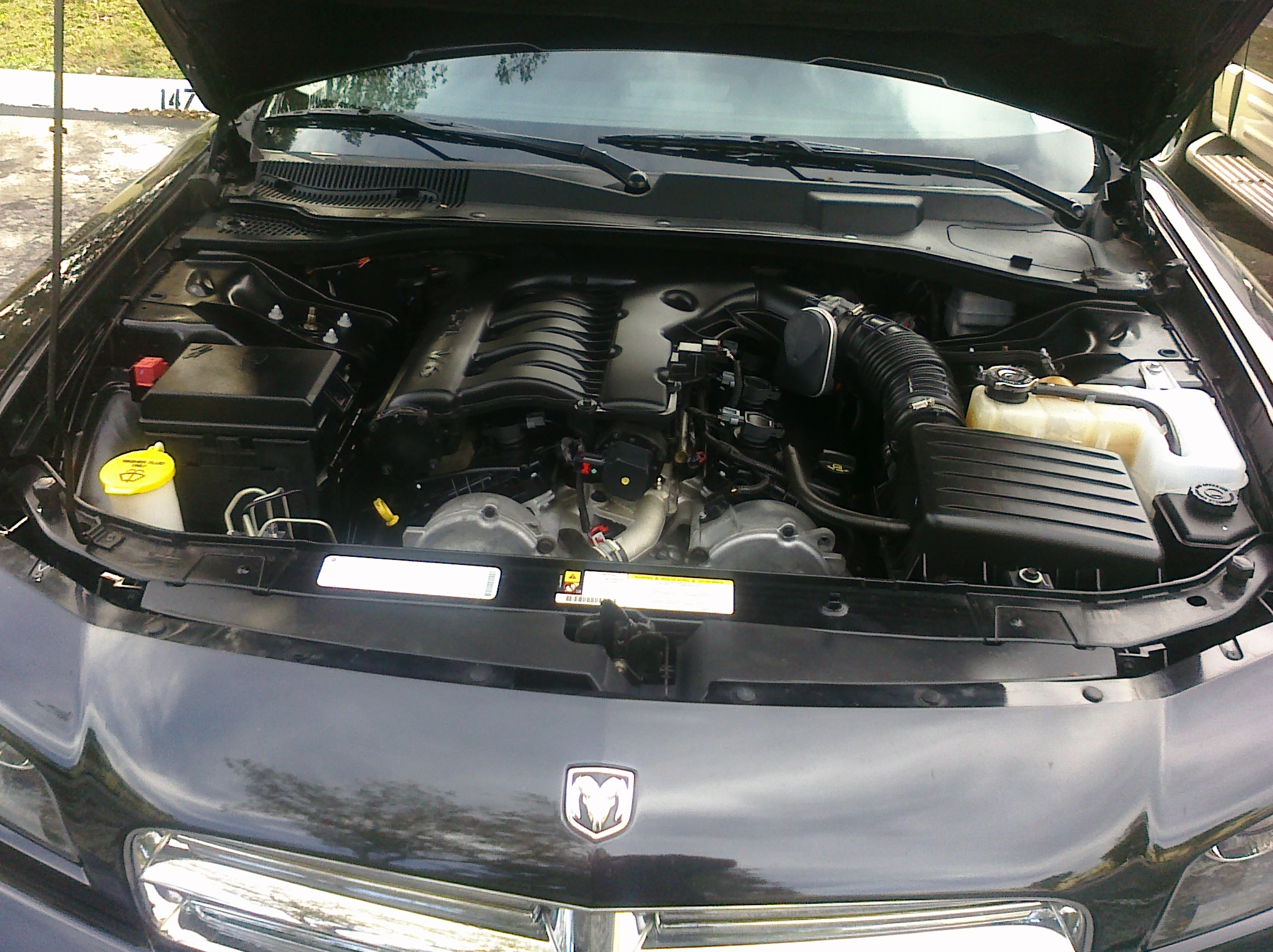 lurchjr 2009 Dodge Charger 14265376