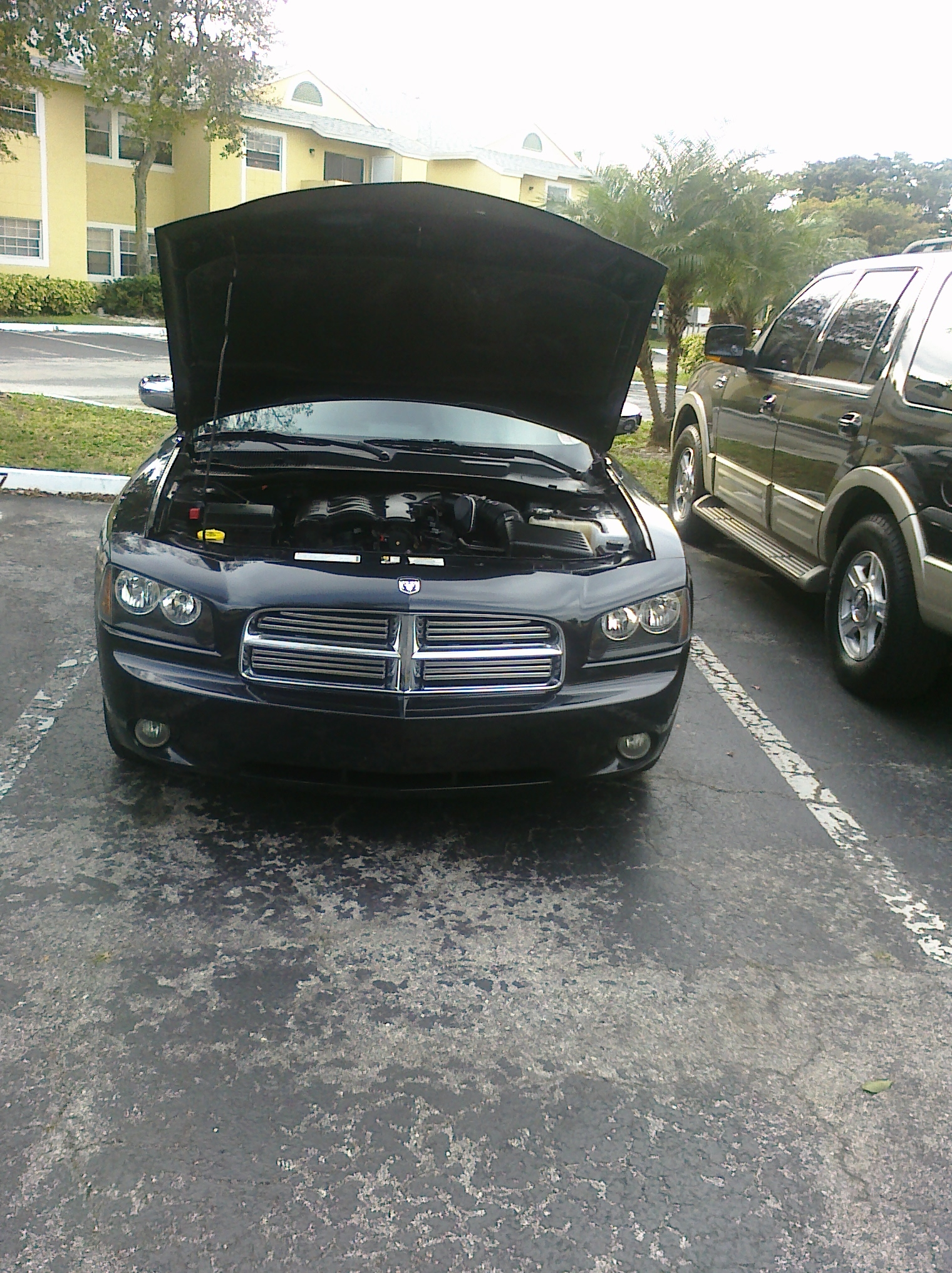 lurchjr 2009 Dodge Charger 14265378