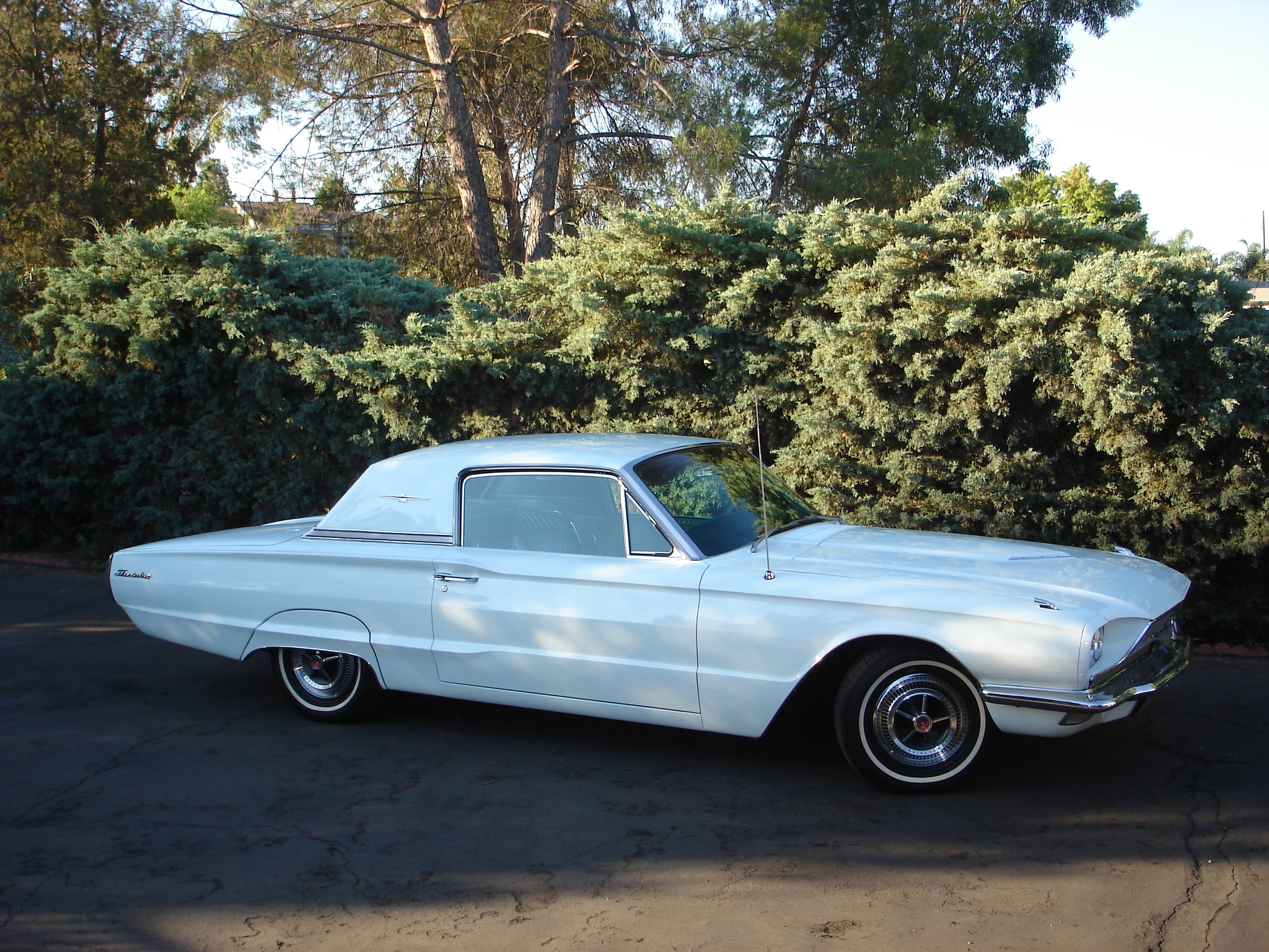 Mustangfeverrr 1966 Ford Thunderbird Specs, Photos, Modification Info At CarDomain