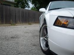 06CamChics 2002 Ford Mustang