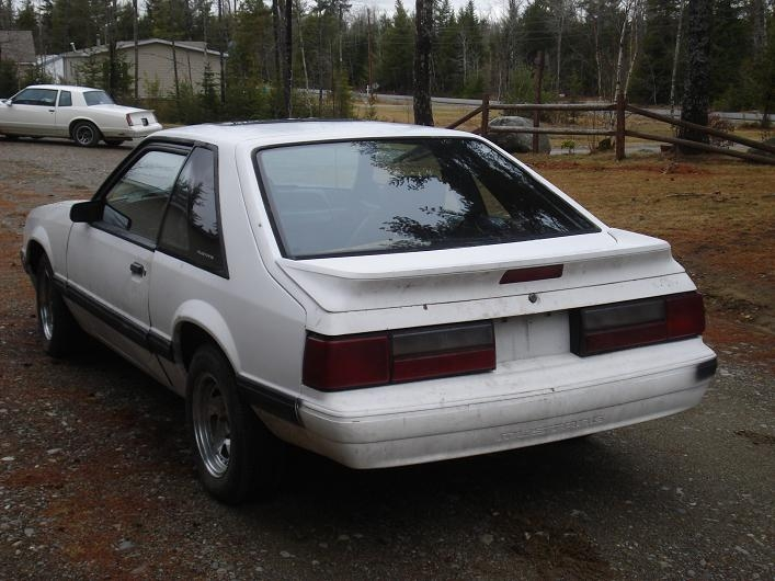 Another 1988montecarloss 1987 Ford Mustang post... - 14322722