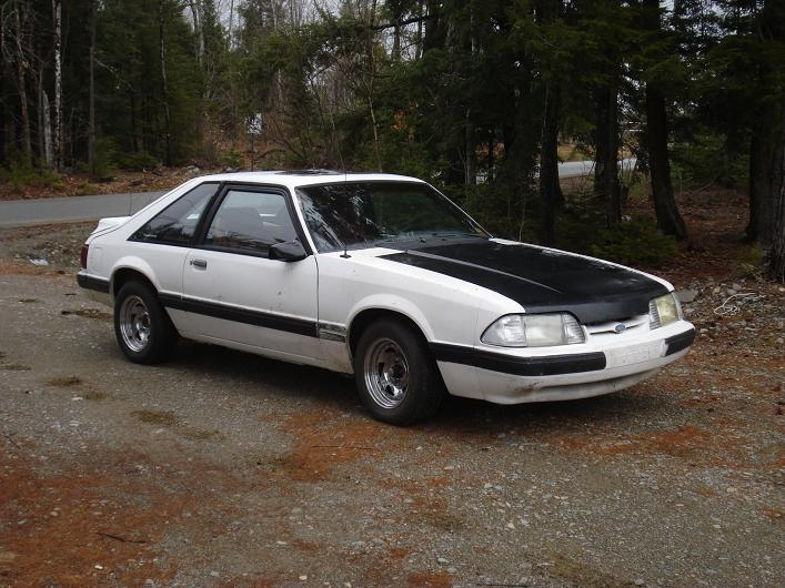 Another 1988montecarloss 1987 Ford Mustang post... - 14322724