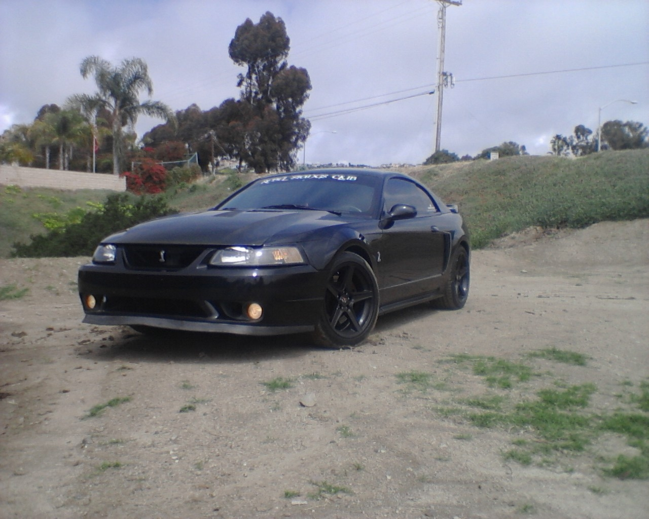 Another BlackCobraGirl 1999 Ford Mustang post... - 14324170
