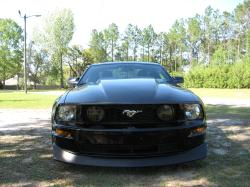 mike08gts 2008 Ford Mustang