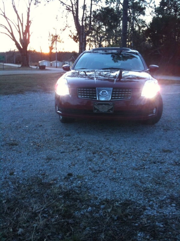 Another Mississippimoss 2006 Nissan Maxima post... - 14352869