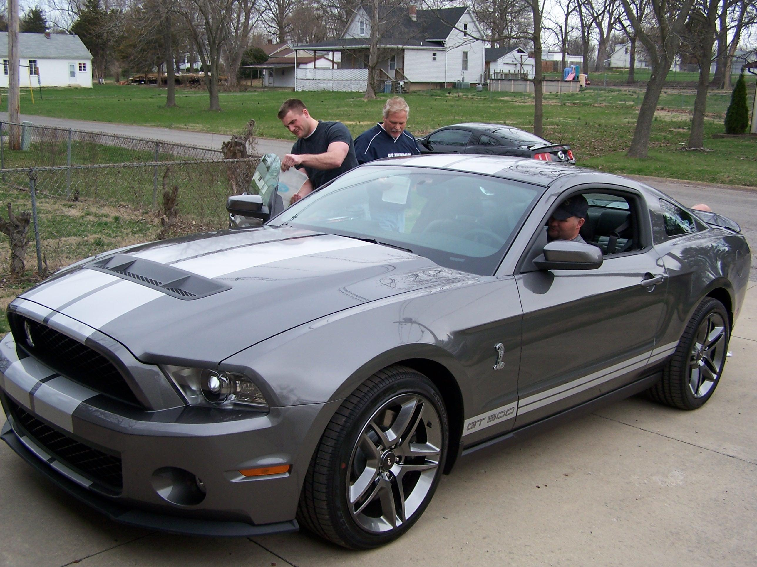 griz 83ho 2010 shelby gt500 specs photos modification info at cardomain. Black Bedroom Furniture Sets. Home Design Ideas