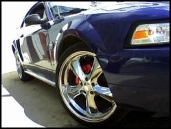 SuccexyStangs 2004 Ford Mustang