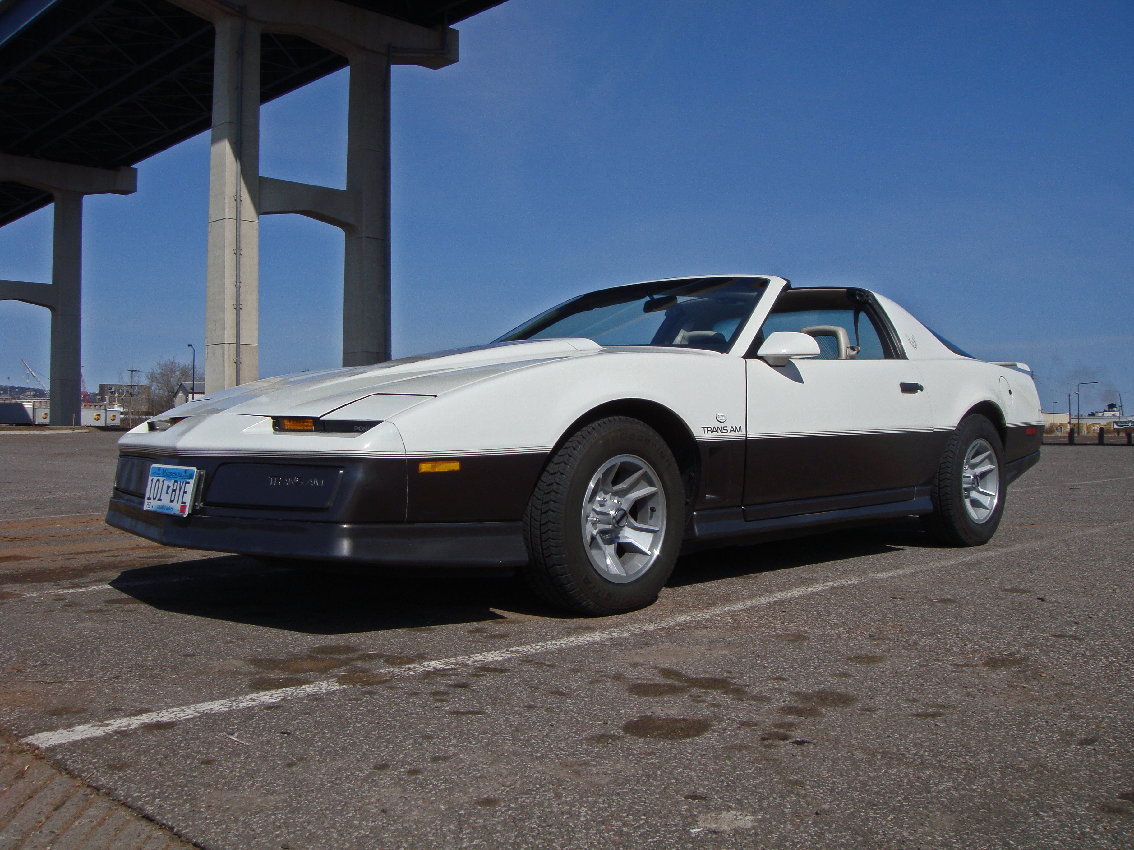Another supertrick_05 1983 Pontiac Trans Am post... - 14389367