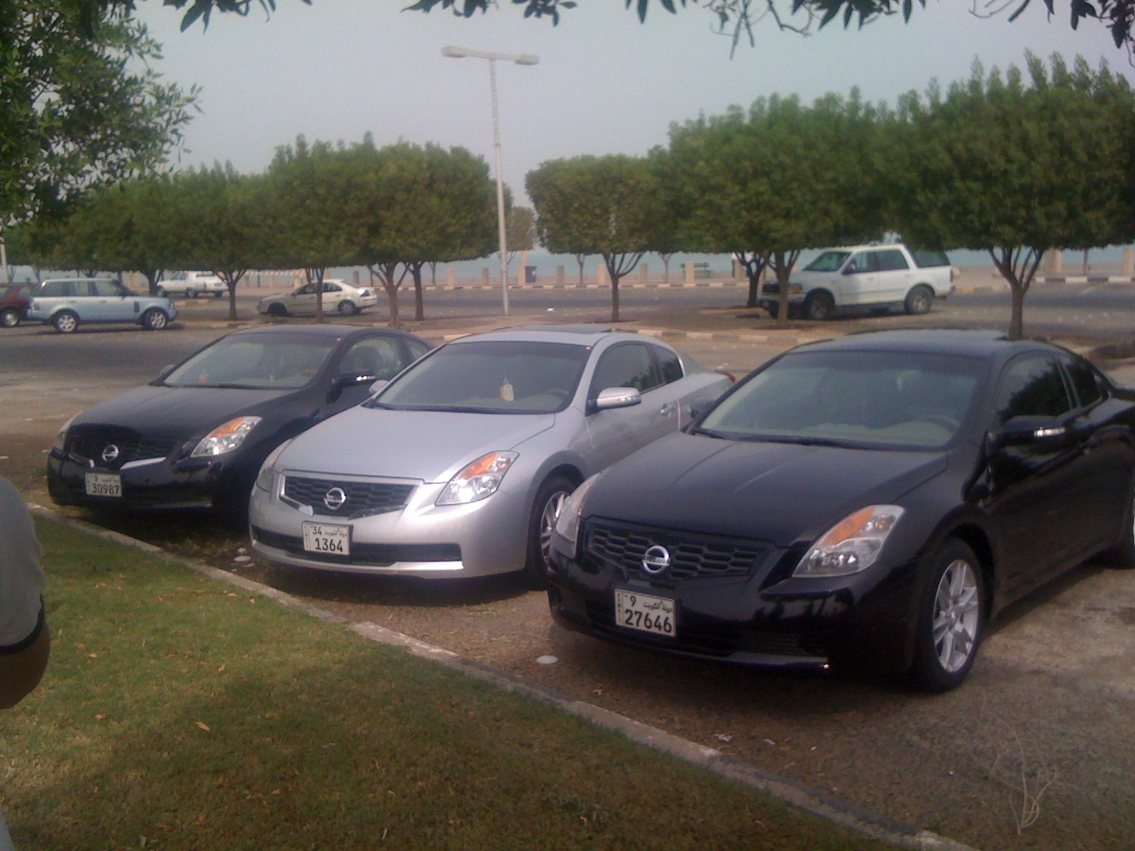 q8AltimaCoupe 2009 Nissan Altima 14392575