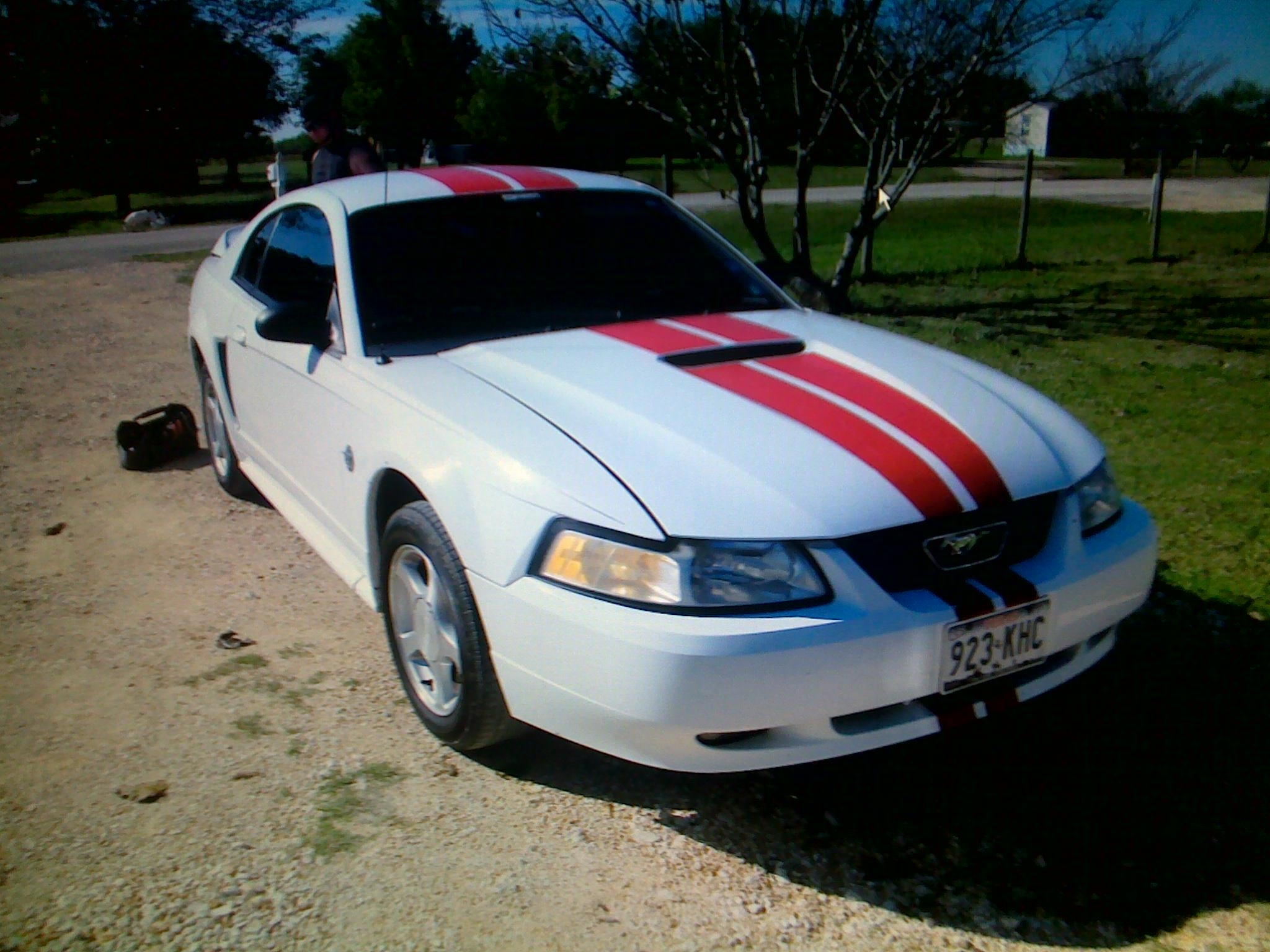 cjshelby 1999 Ford Mustang 14414664
