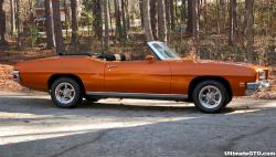 piperwags 1972 Pontiac LeMans