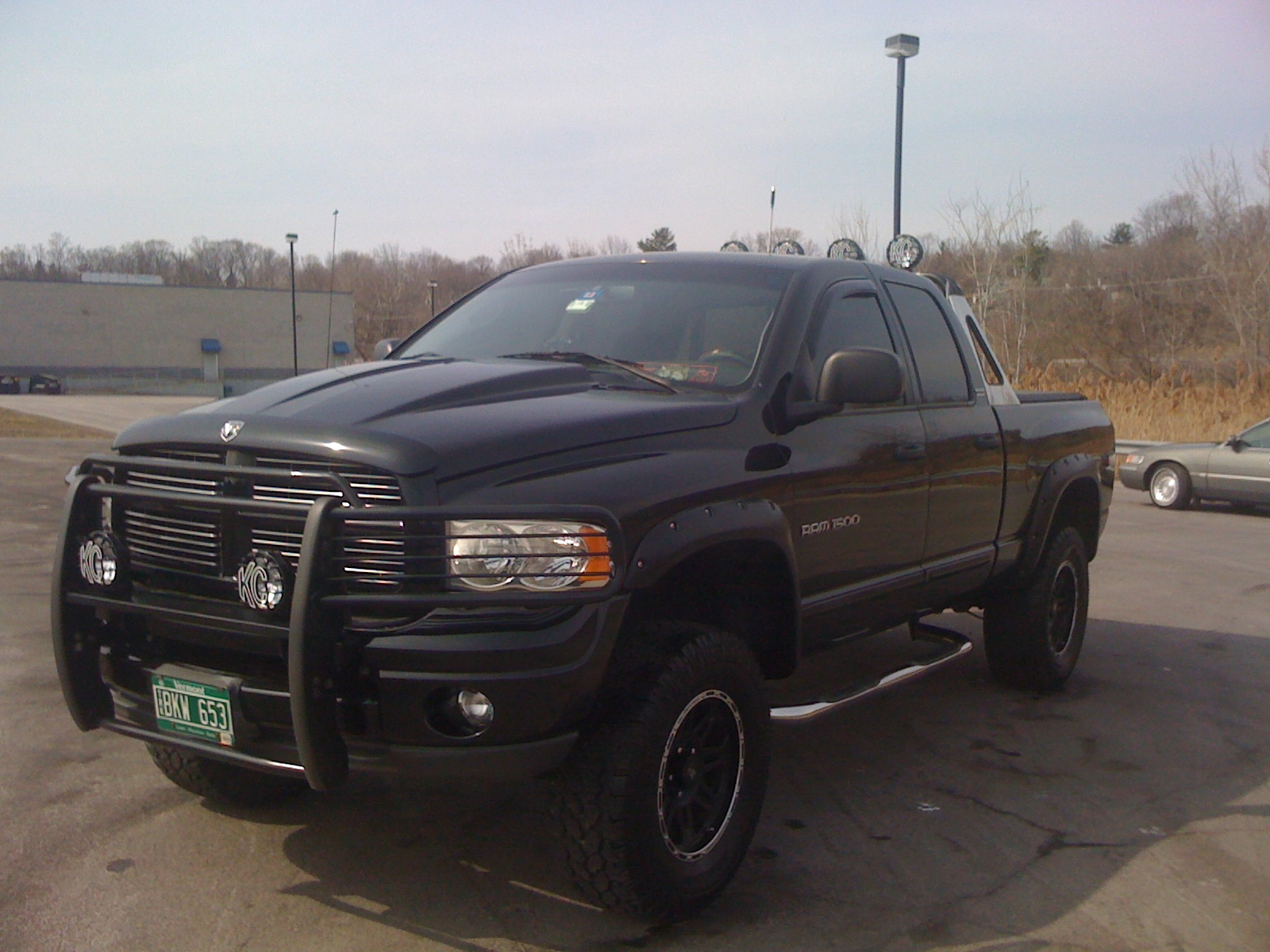 metalwolf69 2002 dodge ram 1500 quad cab specs photos modification info at cardomain. Black Bedroom Furniture Sets. Home Design Ideas