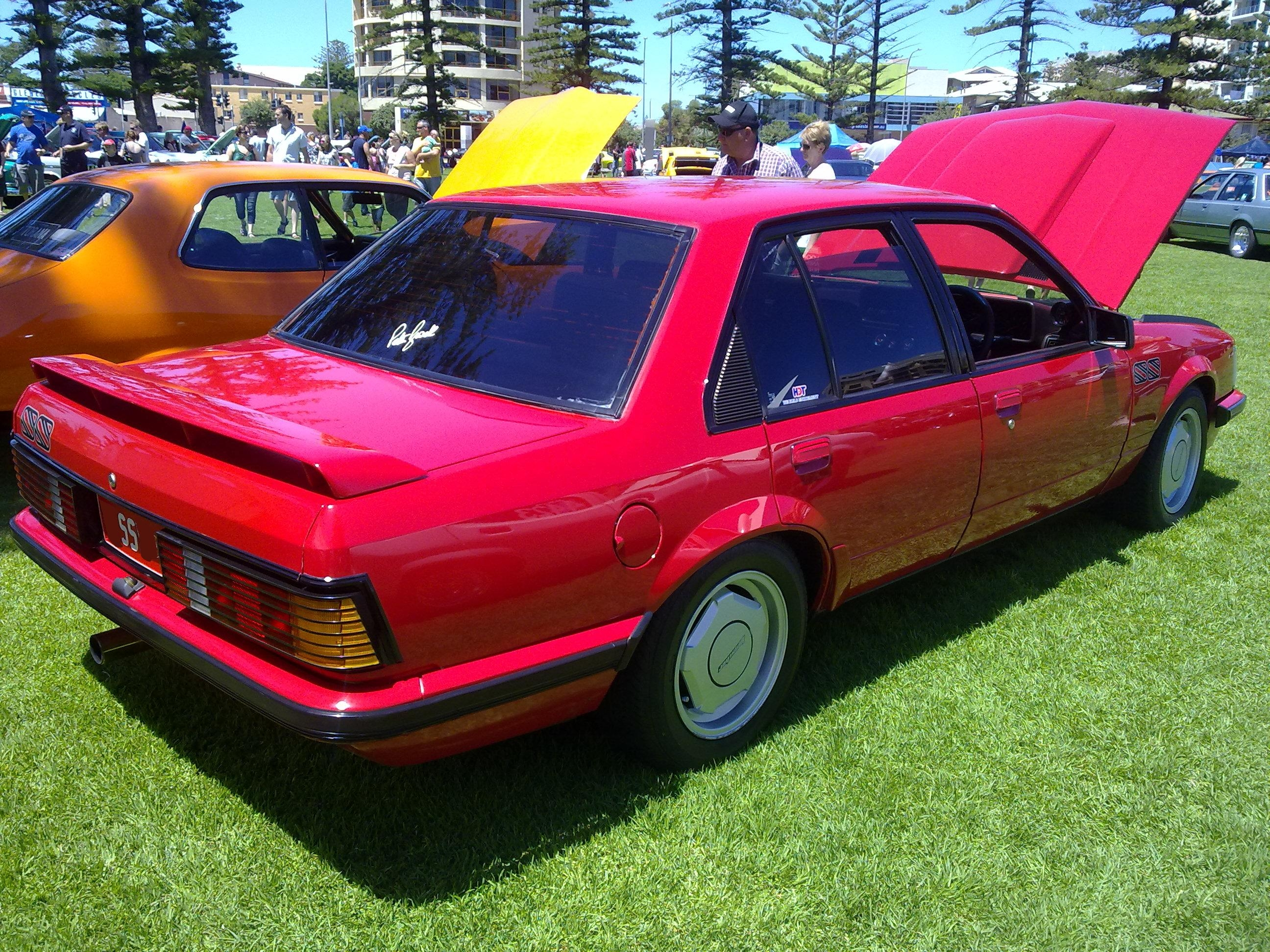 stinktube 1982 Holden Commodore 14461409