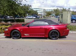 guilty101s 2000 Saleen Mustang