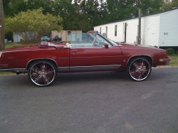 84CutDoggs 1984 Oldsmobile Cutlass Supreme