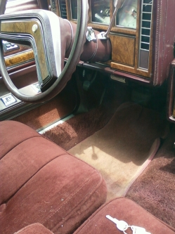 Flosnewmans 1980 Buick Regal
