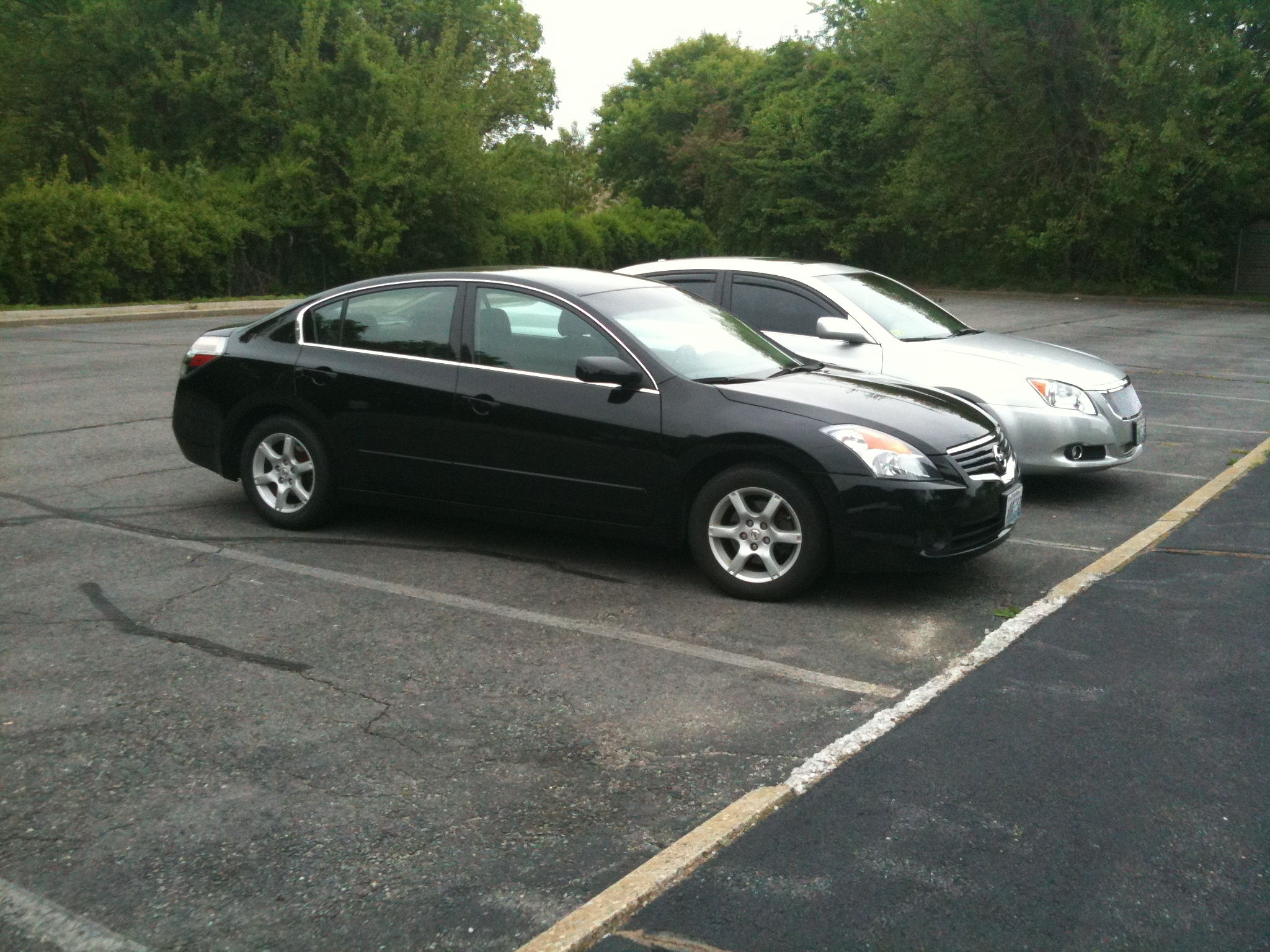 Another Lil-lashes 2009 Nissan Altima post... - 14483812