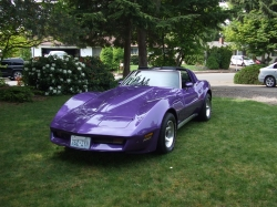 hauffsterjs 1980 Chevrolet Corvette