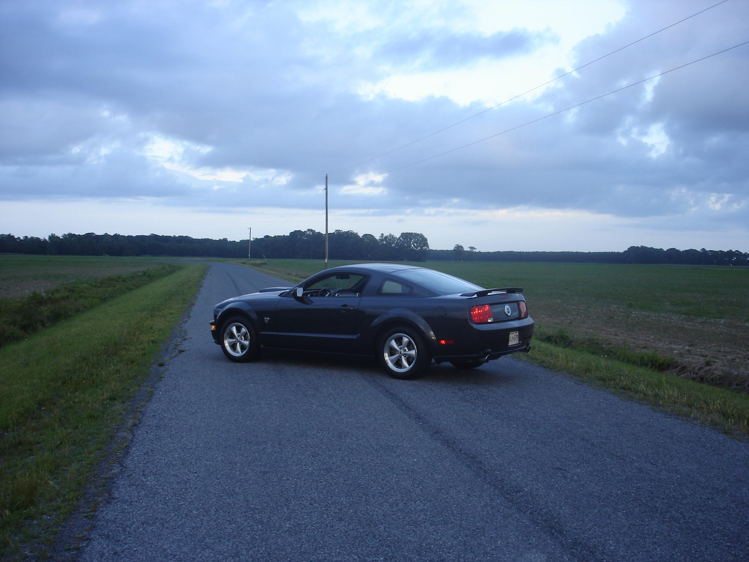 Another n2onme 2009 Ford Mustang post... - 14518865